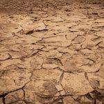 Göller çöllere dönüyor: Sebebi iklim değil insan – sumerhaber.com